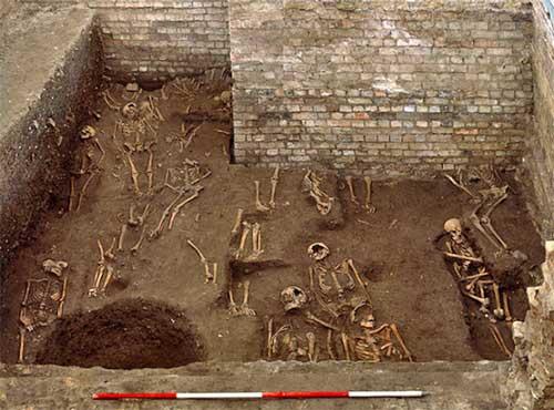 Cambridge skeletons
